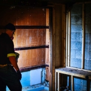 insurance coverage for mold
